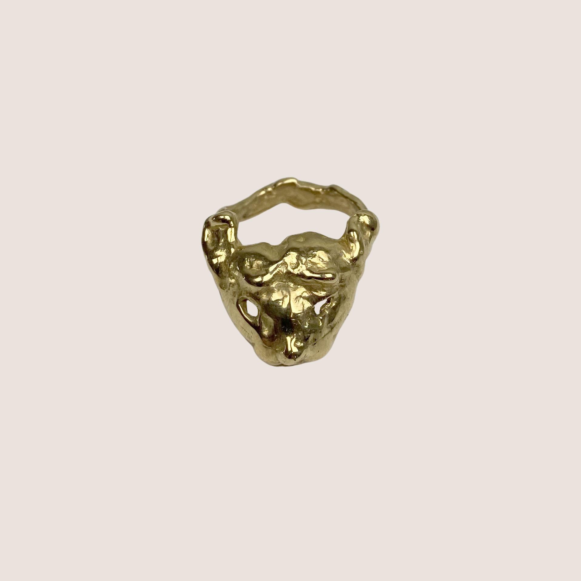 Dog Ring